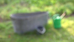 Wanna w ogródzie, 4K zdjęcie wideo