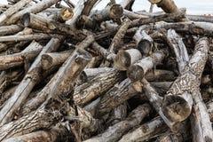 Wanordelijk opgestapeld oud brandhout royalty-vrije stock foto's