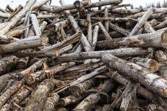 Wanordelijk opgestapeld oud brandhout stock afbeelding