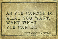 Want can do DaVinci. As you cannot do what you want - ancient Italian artist Leonardo da Vinci quote printed on grunge vintage cardboard stock image