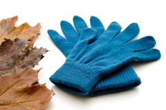 Want gloves with foliage Royalty Free Stock Images