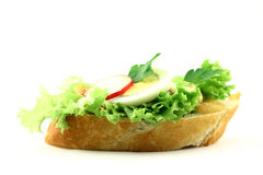Want a sandwich?. Side view at tasty fresh sandwich with salmon on iceberg lettuce and some addons Stock Image