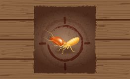 Wanted poster of termites on wooden brown wall, empty termite ad on wood vintage wall, termite image at wood texture for banner royalty free illustration