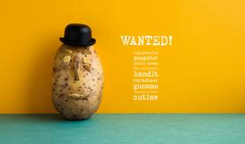 Wanted top priority potato gangster poster. Old fashioned style bowler black hat potato yellow wall, green floor. Text Royalty Free Stock Image
