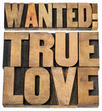 Wanted true love in wood type Royalty Free Stock Photo