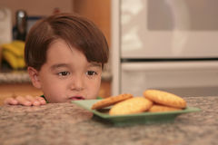 Wanting Some Cookies. Young Kid Starring at a Plate of Cookies Stock Photo