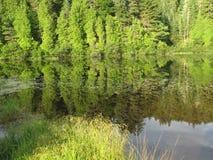 Wapizagonke jeziora odbicie Zdjęcia Stock