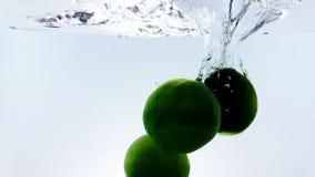 Wapna owocowego pluśnięcia spada puszek w białego koktajl i wodę pije szkło, strzał w zwolnionym tempie na białym tle zbiory wideo