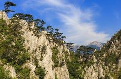 Wapnia wąwóz ochraniający teren w Rumunia obrazy stock