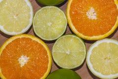 Wapno, cytryny i pomarańcze, Obraz Royalty Free