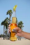 wapno piwa Obraz Stock