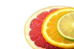 Wapno plasterki, pomarańczowy i grapefruitowy zdjęcie stock