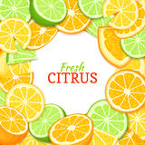 Wapno pomarańczowej cytryny round biała rama Wektor karciana ilustracja Tropikalny świeży i soczysty owoc tło z miejscem dla Zdjęcie Stock