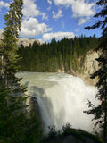 Wapta Falls Royalty Free Stock Images