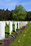 War cemetery. Rows of headstones at the Canadian War Cemetery in Holten, the Netherlands, after annual May 4th ceremony for Dutch Memorial Day remembering the Stock Photos