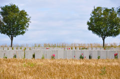 War Cemetery - The Somme - France Stock Image