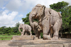 War elephants sculpture, Sun temple Konark Royalty Free Stock Photo
