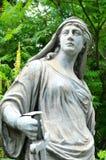 War goddess Stock Photos
