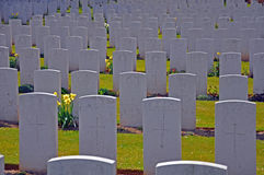 War grave headstones Royalty Free Stock Photos
