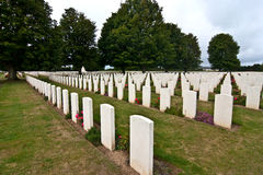 War graves Stock Photo