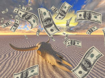 War Greed. Cow Skull money and nuclear blast Stock Photography