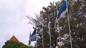 War of Independence Victory Column and flags of Estonia.