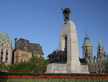War Memorial Tulips - Horizont Stock Photos
