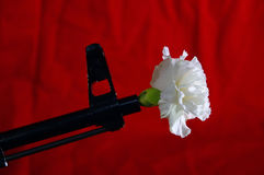 War and Peace. AK-47 with Carnation Royalty Free Stock Photography