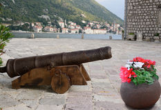 War & piece. Cannon & flovers Kotors island. Royalty Free Stock Photography
