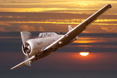 War propeller fighter plane Royalty Free Stock Photos