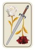 War of red and white roses. Card with a red and white rose - a war of red and white roses Stock Images