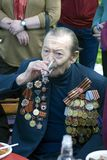 War veteran man drinks for the victory. Royalty Free Stock Photos