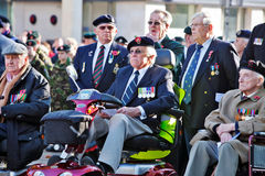 War veterans. AYLESBURY, ENGLAND - NOVEMBER 13: War veterans from past conflicts take pride of place at the Armistice day ceremony on November 13, 2011 in Stock Photos
