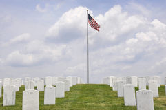 War Veterans Cemetery royalty free stock photo
