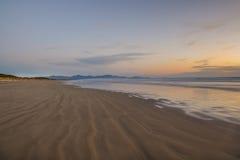 Waratah plaża Obrazy Stock