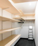 Wardrobe with shelves and ladder Stock Image