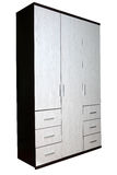 Wardrobe in two colors, texture wenge wood. Royalty Free Stock Photo
