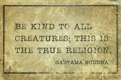 Ware godsdienst Boedha royalty-vrije stock afbeelding