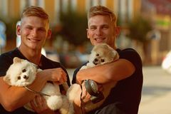 Ware vreugde om enkel rond te zijn Spitz de honden houden van het bedrijf van hun familie Gelukkige familie op gang De tweelingen royalty-vrije stock afbeeldingen