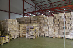 Free Warehouse Royalty Free Stock Photos - 51086498