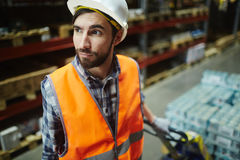 Warehouse Loader. Portrait of bearded loader working in warehouse, pulling moving cart with retail goods in aisle between tall shelves royalty free stock images