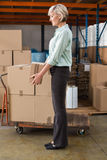 Warehouse manager holding cardboard box. In a large warehouse Royalty Free Stock Image