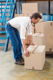 Warehouse manager picking up cardboard box. In a large warehouse Royalty Free Stock Photo