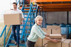 Warehouse managers loading a trolley Stock Photography