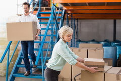 Warehouse managers loading a trolley Stock Photos