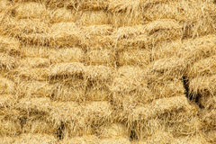 Free Warehouse Of Hay Stock Photography - 49515722