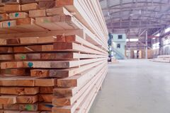 Free Warehouse Or Factory For Sawing Boards On Sawmill Indoors. Wood Timber Stack Of Wooden Blanks Construction Material Royalty Free Stock Photography - 169604677