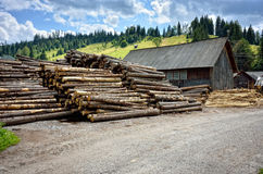 Warehouse for raw logs in mountain Royalty Free Stock Photography