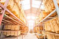 Warehouse for rubber to export rubber. stock photos