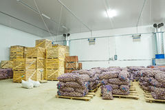 Warehouse view on potato in crates and bags Stock Images
